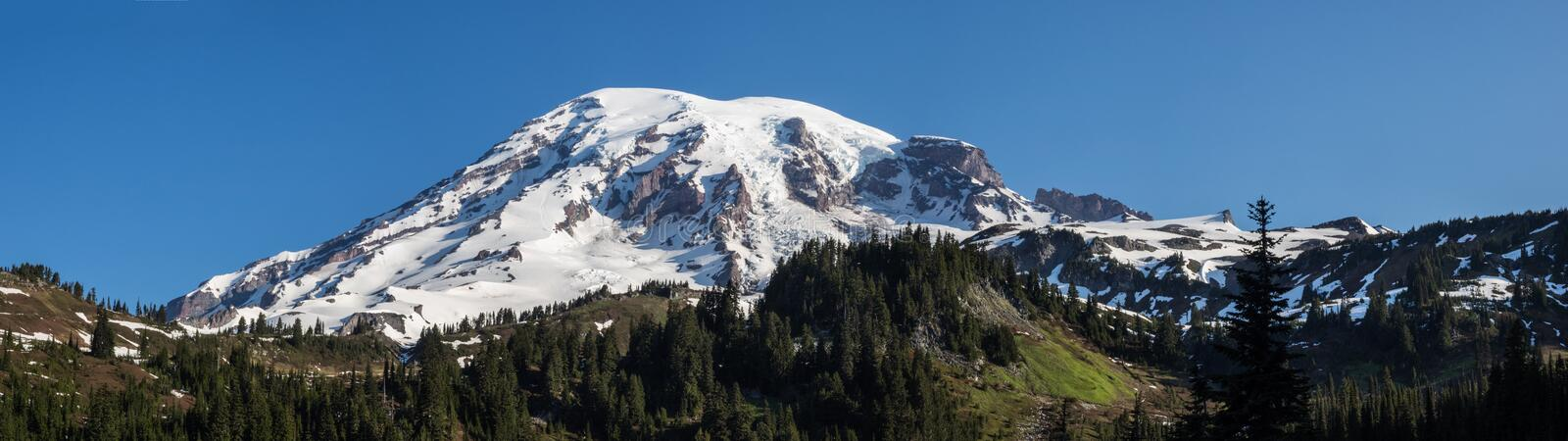 Snow capped Mt. Rainer panorama. Snow and glaciers cap the top of Mt. Rainer in Washington on a sunny morning royalty free stock photo