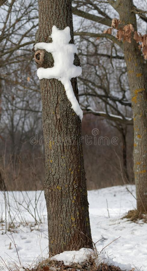 Snow cat on a tree in Park in Kiev. NCute cat on the tree. Cat outdoors. Wild cats in nature.nSilhouette, a cat shape molded from snow on a tree trunk.nUkraine stock image