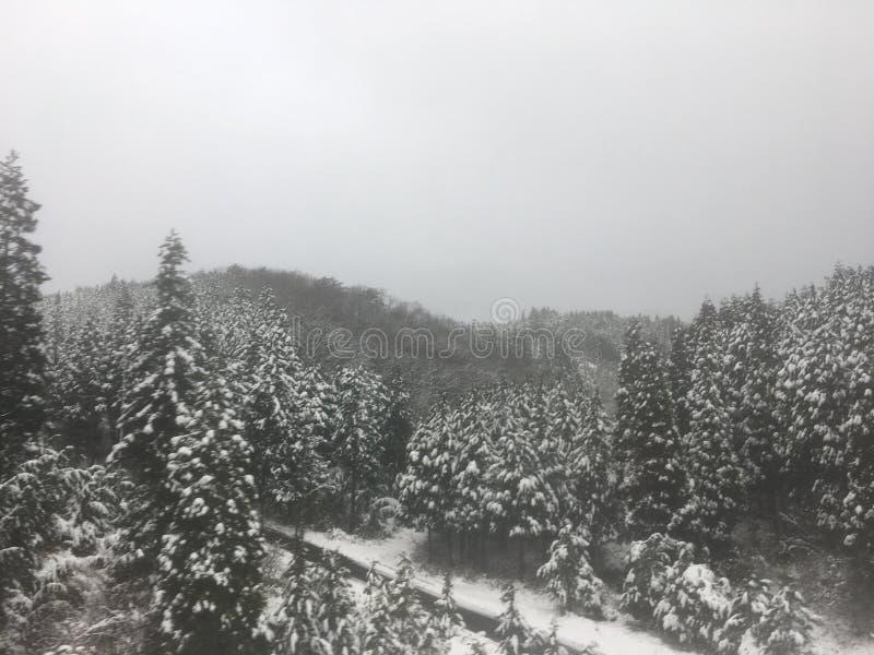 Snow city royalty free stock image