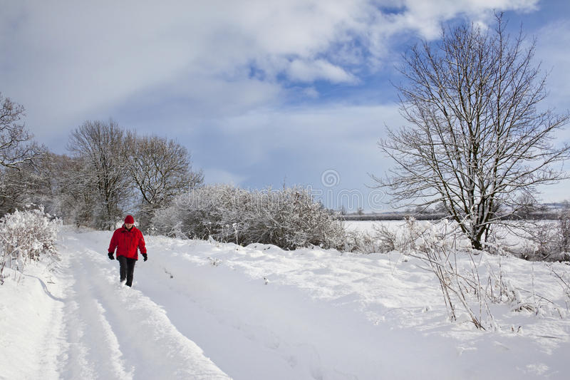 Snow on a country lane - England