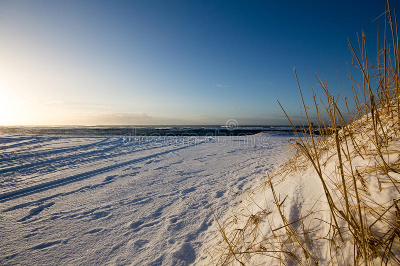 Snow Covered Beach at Dawn. With Close Up foreground stock photos