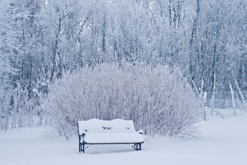 Download Snow covered bench stock photo. Image of cold, calm, corroded - 23984634