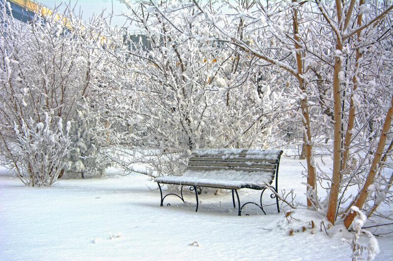 Snow covered bench in a deserted park. Winter. Russia royalty free stock photos