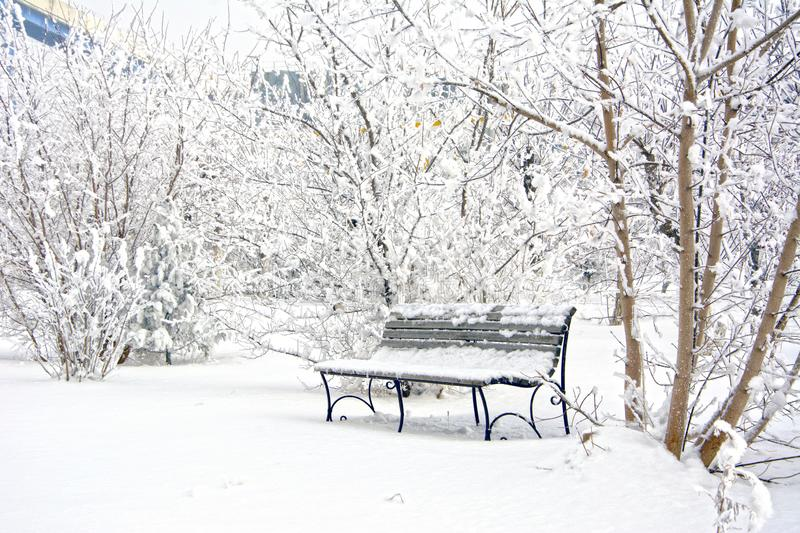 Snow covered bench in a deserted park. Winter. Russia stock images