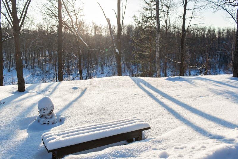 Snow-covered bomen en banken in het stadspark De winterlandschap van ijzige bomen, witte sneeuw en blauwe hemel tranquil stock afbeeldingen