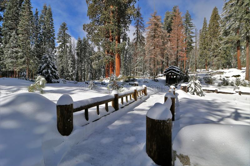 A snow covered bridge in Sequoia National Park California stock images