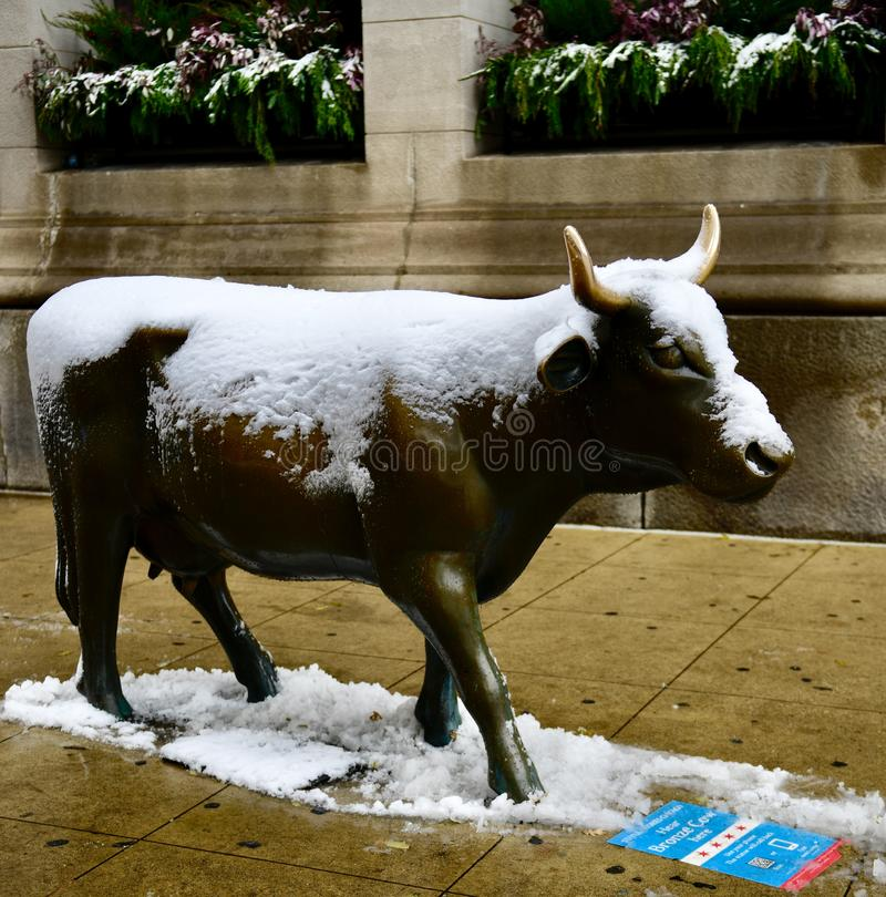 Snow Covered Bronze Cow royalty free stock images