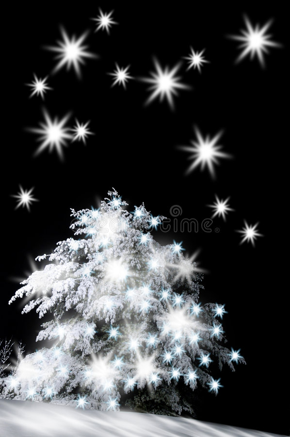Snow-covered christmas tree royalty free stock photos