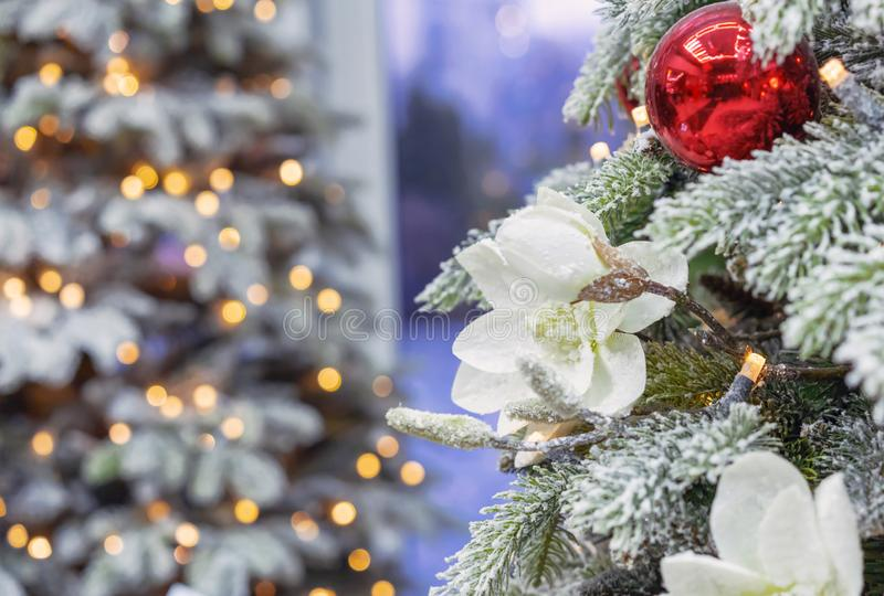 Snow-covered Christmas tree with decorations on the background with bokeh stock photos