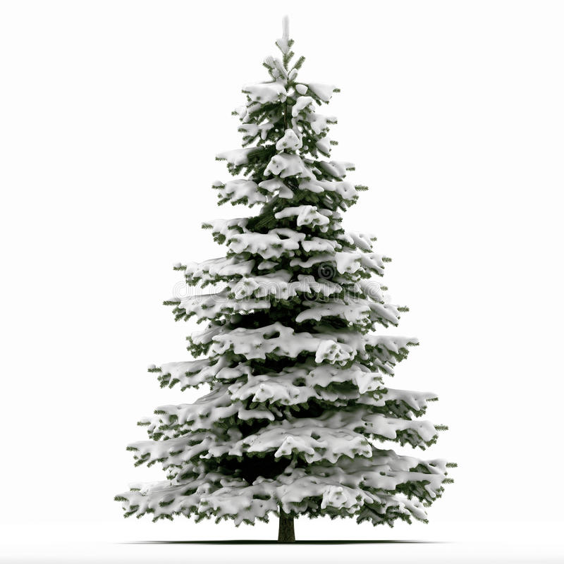 download snow covered christmas tree stock illustration image 31269273 - Snow Covered Christmas Trees