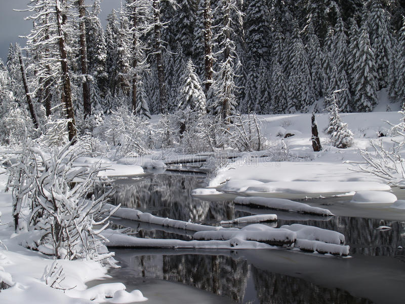 Download Snow Covered Creek stock image. Image of creek, road - 27231031