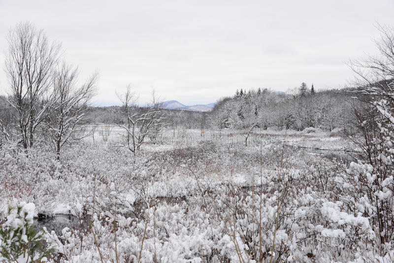 Snow covered Dug Mountain view from Speculator, NY. Snowy view of Dug Mountain and the Kunjamuk River Valley in the Adirondacks stock image
