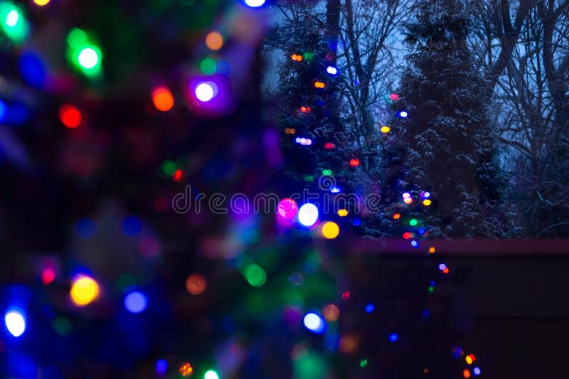 Snow covered evergreen trees at night with defocused illuminated Christmas tree in the foreground. Christmas background royalty free stock image