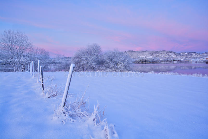 Download Snow covered field stock photo. Image of norway, beautiful - 22401262