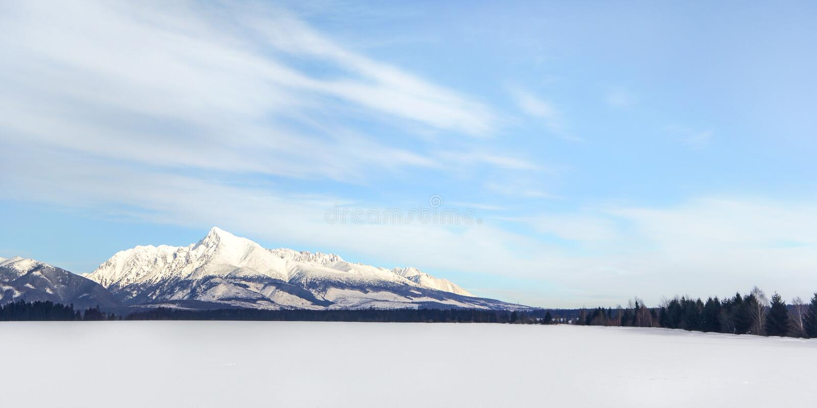 Snow covered field with Mount Krivan Slovak symbol in distance. Wide winter panorama with space for text royalty free stock images