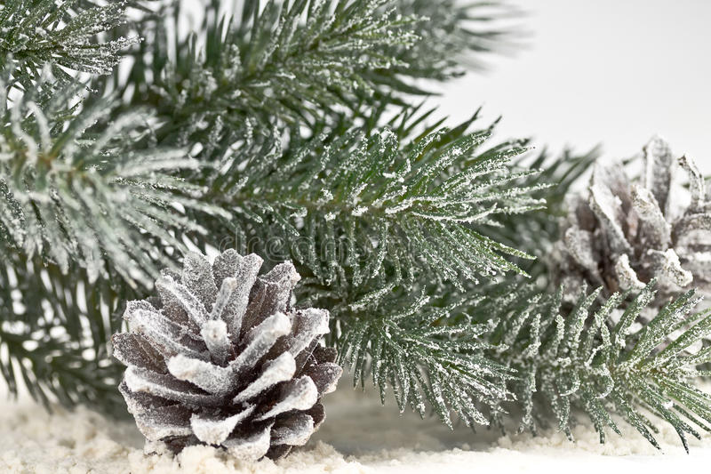 Download Snow-covered Fir Branches And Cones Stock Photos - Image: 27623853
