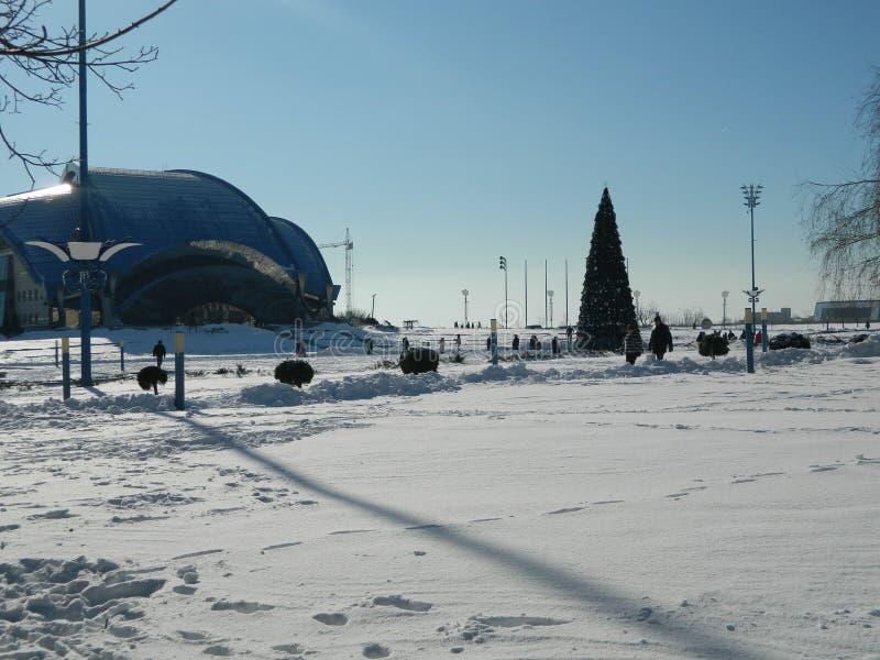 Snow-covered gebied royalty-vrije stock fotografie