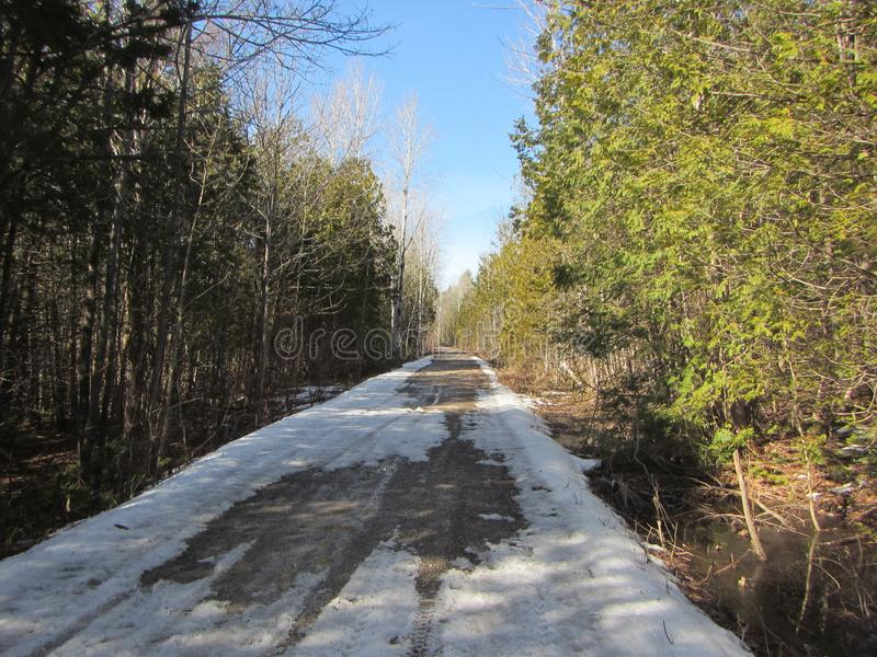 Snow-covered gravel road through forest in Southern Ontario Canada stock photos