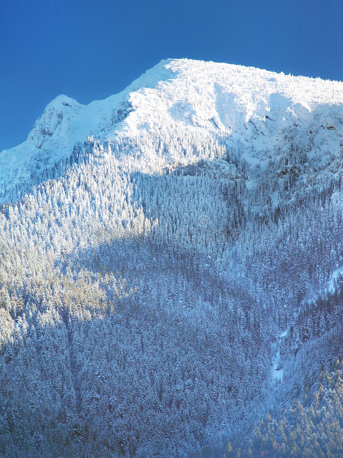 Snow Covered Great Choc Mountain Royalty Free Stock Photos