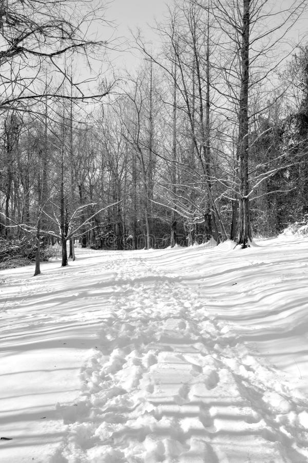 Snow covered hiking trail stock photo