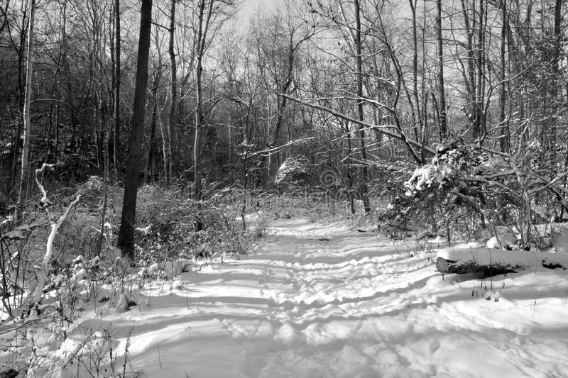 Snow covered hiking trail royalty free stock photos