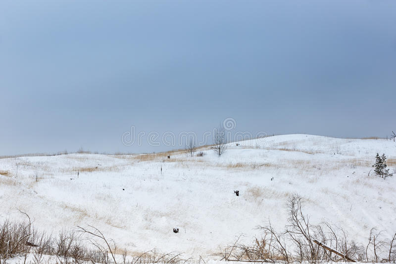 Snow-covered hills in the winter. On the site of the burned forest stock photography