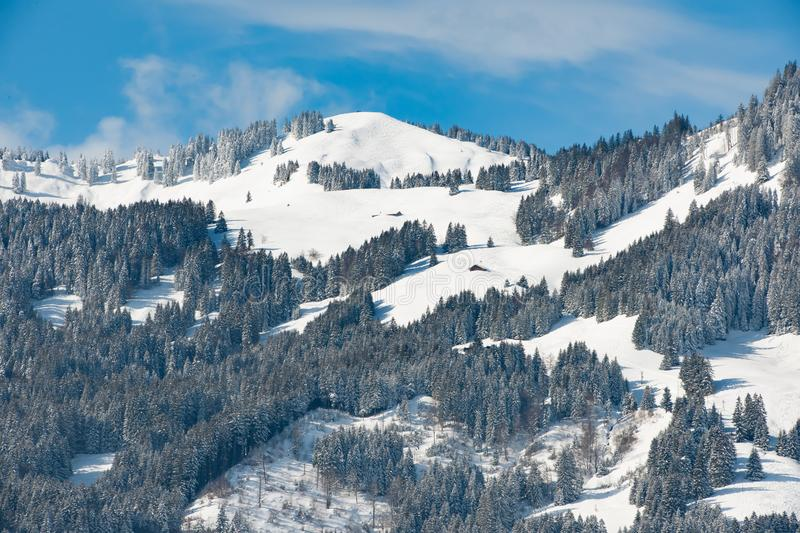 Snow covered landscape with fir forest and mountains, Bavaria, Germany royalty free stock photos