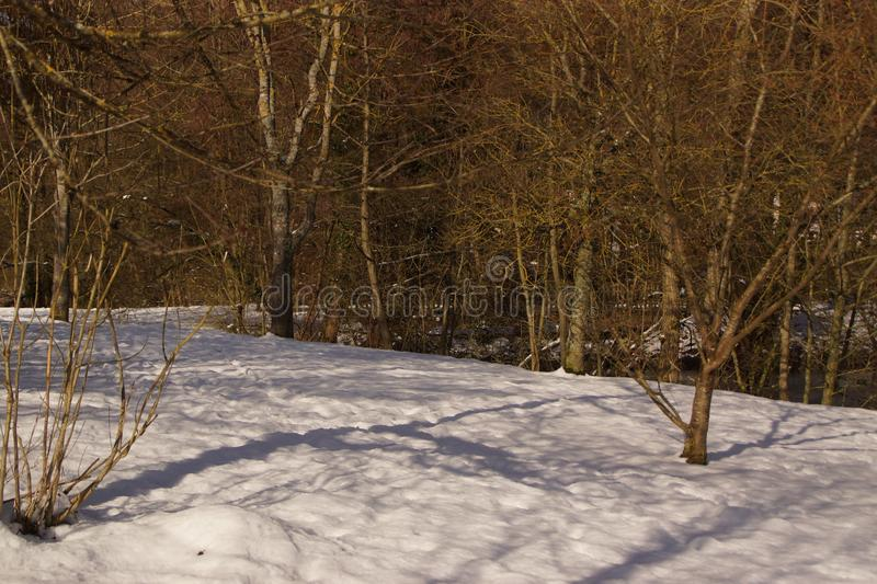 Snow-covered landscape, in a forest - France royalty free stock photography
