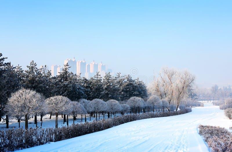 Snow-Covered Landschap stock foto