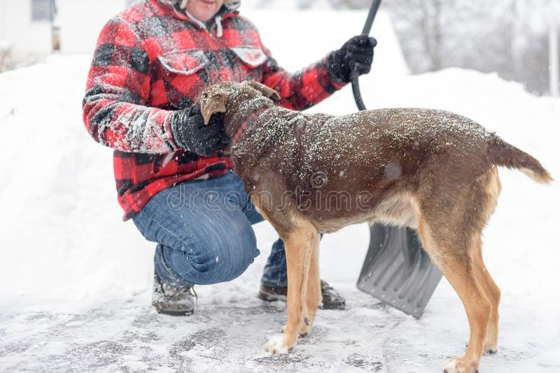 Snow covered man and dog stock photos