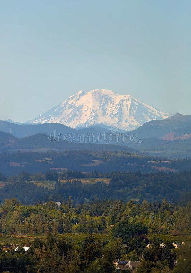 Mount Adams in Washington State. Snow covered Mount Adams in Washington State on a clear blue sky day royalty free stock photos
