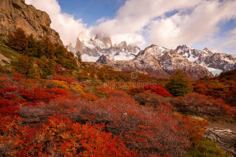 Snow-covered Mount Fitz Roy on beautiful fall day amongst forest of lenga trees. Hiking in Los Glaciares National Park on a beautiful fall day, taking in the royalty free stock photos