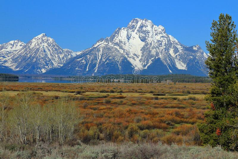 Snow-covered Mount Moran towering above Jackson Lake and Open Meadows, Grand Teton National Park, Wyoming, United States. Mount Moran and other Grand Teton Range stock images