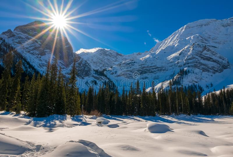 A snow covered mountain on a clear blue winter day in the Mountains at Black Prince Cirque in Kananaskis, Alberta royalty free stock images