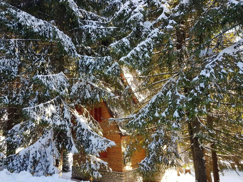 Snow covered mountain hut and fir trees. Chalet with wooden logs, it is surrounded by fir trees and everything is covered by a thick white snow stock photos