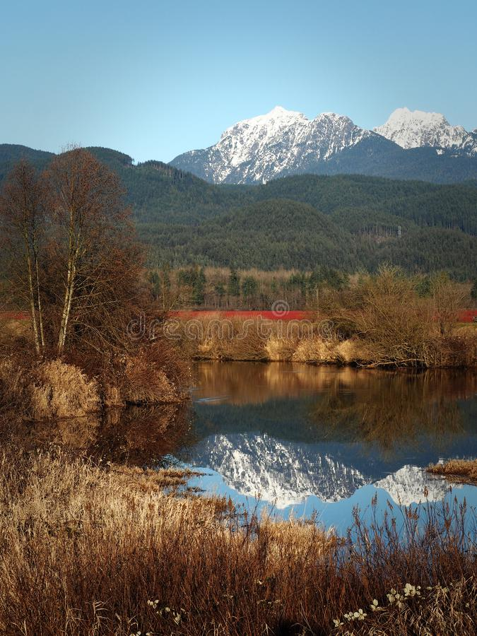 Landscape of Maple Ridge, British Columbia, Canada. Snow covered mountain peaks reflecting in clear river in autumnal landscape of Maple Ridge, British Columbia royalty free stock photography