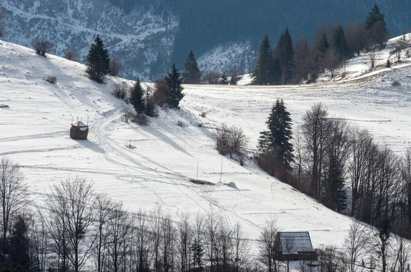 Snow-covered mountain slope with a large fir and a wooden hut. Winter mountain landscape stock image