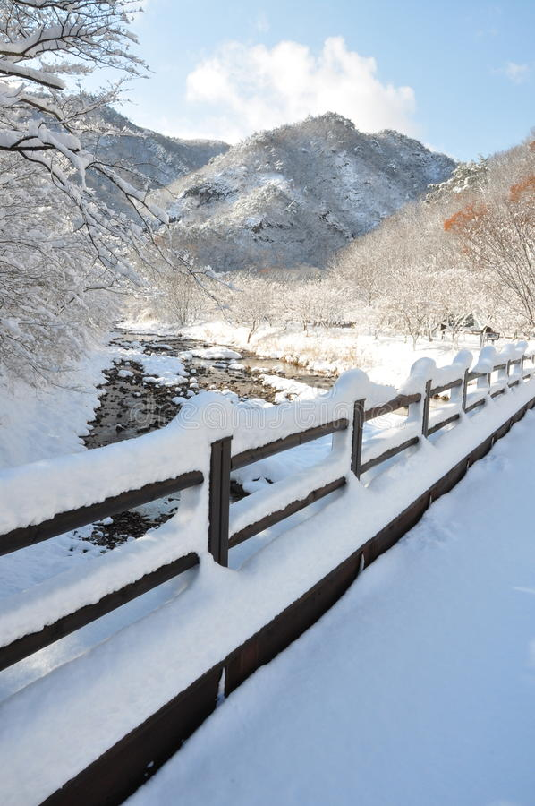 The snow stock photos