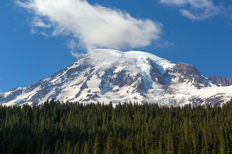 Snow covered Mt Rainier in Washington state Closeup. Snow covered Mount Rainier in National Park amongst evergreen trees with blue sky and white clouds closeup stock images