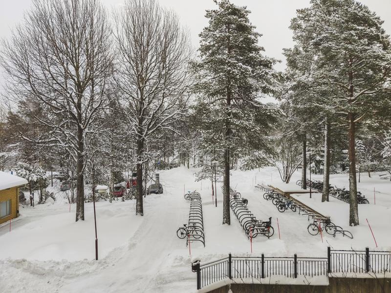 Snow covered outdoor with bikestand and snow filled pine tree stock images