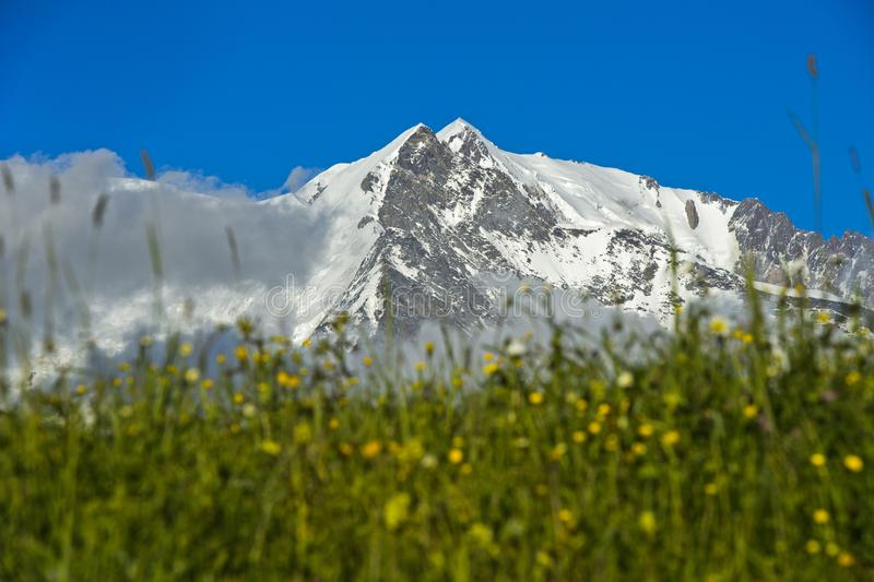The snow-covered peaks of the Mont Blanc massif. The snow-covered peaks Aiguille de Bionnassay and Mont Blanc behind the green lawn of an alpine pasture, Mont stock images