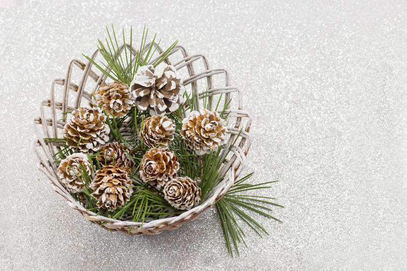 Snow covered pine cones on shiny background stock photo