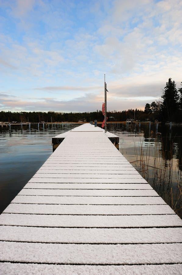 Snow-covered pir arkivbild
