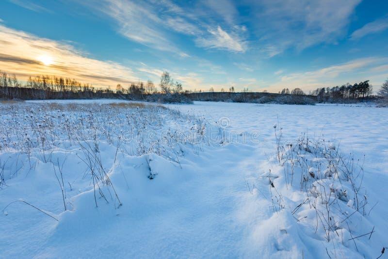 Snow covered polish landscape. Beautiful winter field and trees landscape. Snow covered polish landscape royalty free stock photo