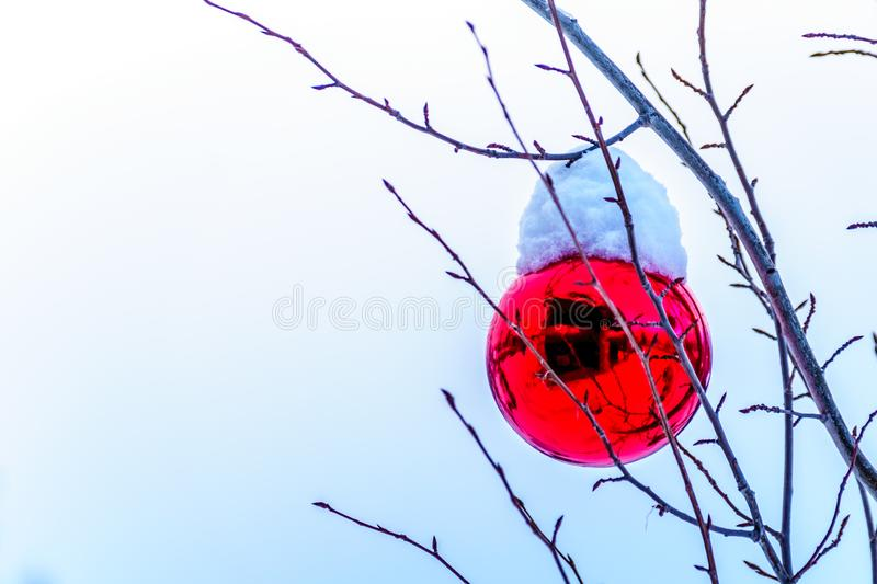 Snow covered Red Christmas Decoration hanging on tree branches of a tree. At Sun Peaks Ski Village royalty free stock image