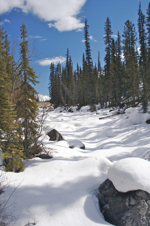 Free Snow Covered River Royalty Free Stock Photography - 15448047