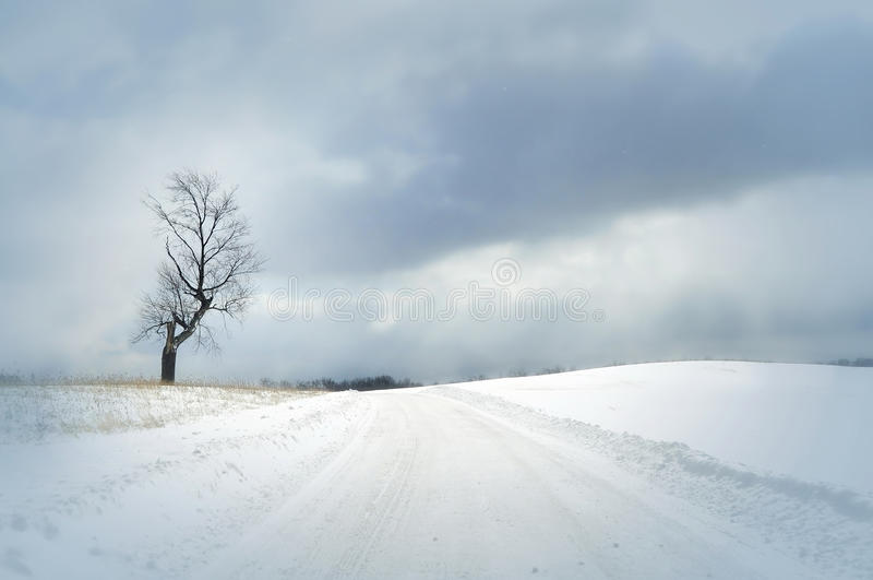 Download Snow covered road stock photo. Image of powder, journey - 25606026