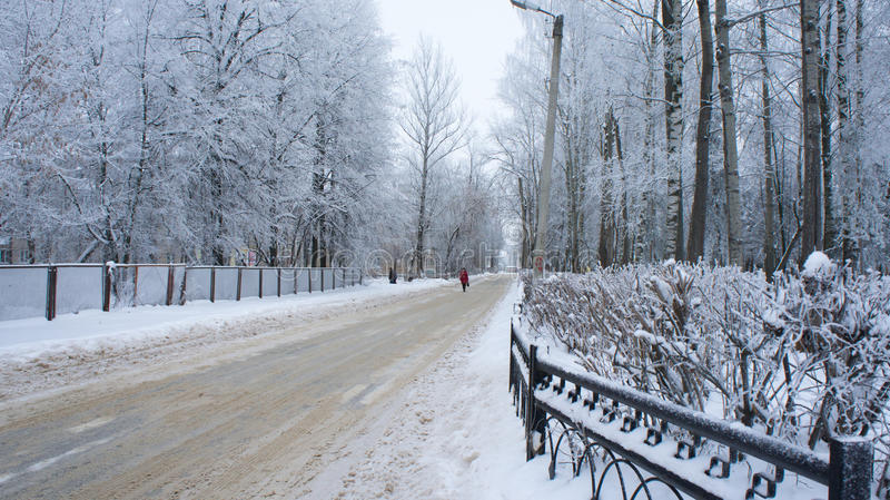 Snow-covered road in the Tver. Snow-covered road in the Tver and trees covered with frost royalty free stock image