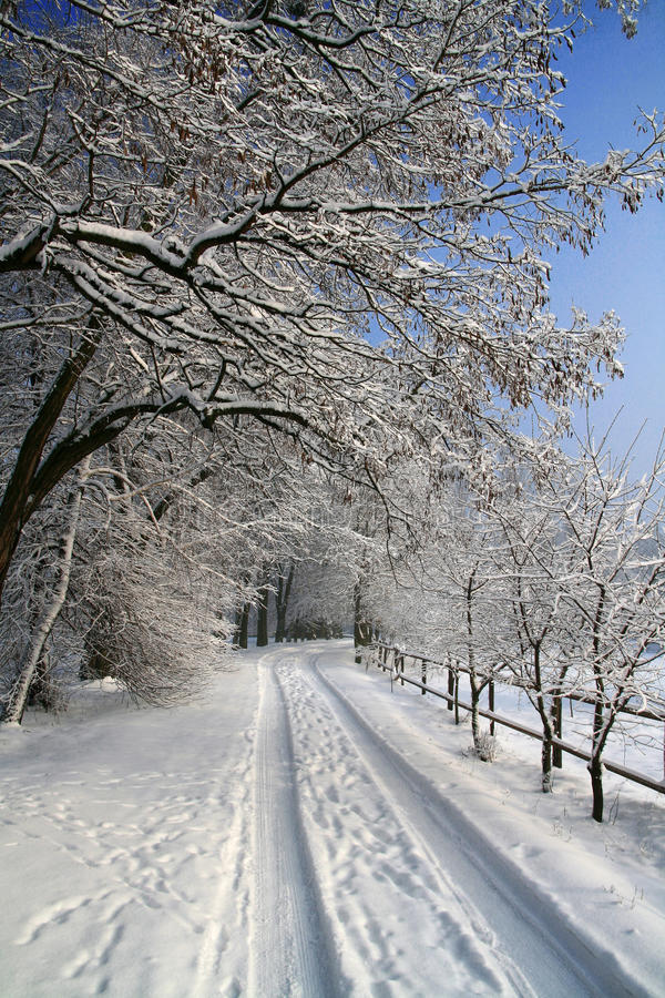 Snow-covered road in the village royalty free stock images