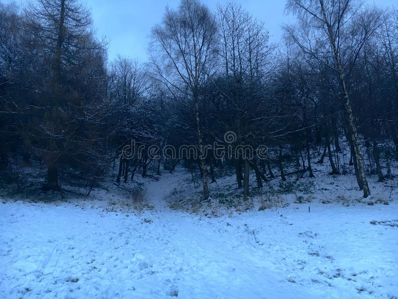 Ruchill Park in winter royalty free stock images